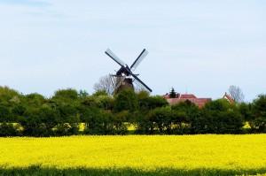Die HAW liegt im schönen Mühlenkreis Minden – Lübbecke.