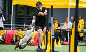 Agility Workshop mit  Thomas Behrendt @ Hundesport Akademie Westfalen | Lübbecke | Nordrhein-Westfalen | Deutschland