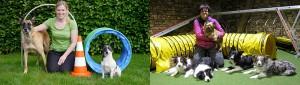 Hoopers Agility Workshop @ Hundesport Akademie Westfalen | Lübbecke | Nordrhein-Westfalen | Deutschland