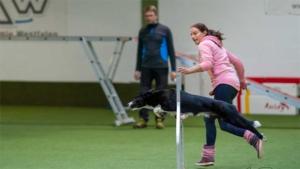 Agility-Seminar Intensivtraining mit Monika Behrendt @ Hundesport Akademie Westfalen | Lübbecke | Nordrhein-Westfalen | Deutschland