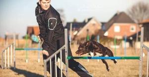 Agility Intensivtraining mit Max Sprinz @ Hundesport Akademie Westfalen | Lübbecke | Nordrhein-Westfalen | Deutschland