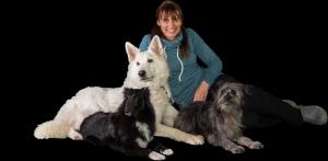 Agilityseminar mit Sandra Körber @ Hundesport Akademie Westfalen | Lübbecke | Nordrhein-Westfalen | Deutschland